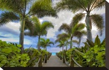 Paradise Path Stretched Canvas Print by Dennis Frates