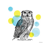 Sketchbook Lodge Owl Prints by Lamai McCartan
