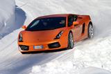 Lamborghini Gallardo mit Winterreifen Fotografisk tryk af Hans Dieter Seufert
