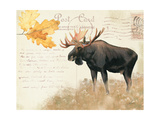 Northern Wild III Prints by James Wiens