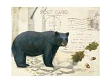 Northern Wild IV Plakater af James Wiens