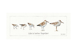 Pebbles and Sandpipers I Poster by Lisa Audit