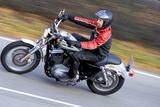Harley-Davidson Sportster 1200 Roadster Photographic Print by Rossen Gargolov