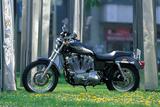 Harley-Davidson XLH Sportster 883 Papier Photo par Rossen Gargolov