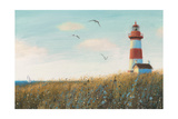 Seaside View I Reproduction giclée Premium par James Wiens