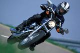 Harley-Davidson XLH Sportster 883 Photographic Print by Rossen Gargolov