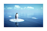 Single Penguin on a Piece of Ice Print by  adimas
