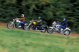 Harley-Davidson Sportster 1200 Custom Photographic Print by Rossen Gargolov