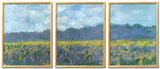 Iris Fields at Giverny Posters by Claude Monet
