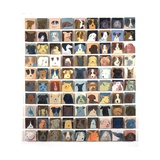 90 Dogs, 2010 Giclee Print by Holly Frean