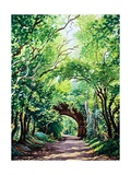 Sudbury Bridge and Trees Giclee Print by Christopher Ryland