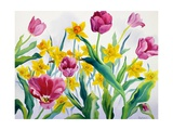 Daffodils and Tulips Giclee Print by Christopher Ryland