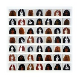 49 Cavalier King Charles Spaniels, 2015 Giclee Print by Holly Frean