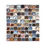 90 Cats, 2010 Giclee Print by Holly Frean