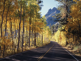 A Road Through the Autumn Colors of Aspen Trees in the June Lake Loop Photographic Print by Christopher Talbot Frank