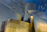 Los Angeles, California. the Disney Concert Hall Exterior Photographic Print by Rona Schwarz