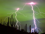 Lightning Strikes with Saguaro Cacti, Sonoran Desert. Tucson, Arizona Photographic Print by Thomas Wiewandt