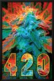 420 Photo