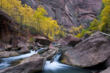 USA, Utah, Zion National Park. Canyon Waterfall with Cottonwood Trees Photographic Print by Jaynes Gallery