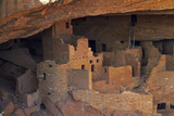 Colorado, Mesa Verde National Park, Cliff Palace, over 700 Years Old Photographic Print by David Wall