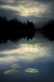 Morning at the Lake Fotografie-Druck von Ursula Abresch