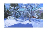 Winter Orchard, Morzine, 2015 Giclee Print by Andrew Macara