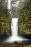 Multnomah Falls and Creek, Multnomah Falls Sp, Columbia Gorge, Oregon Photographic Print by Michel Hersen