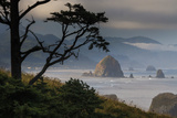 Cannon Beach, Oregon Photographic Print by Art Wolfe