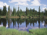 Vancouver Island, Strathcona Provincial Park, Reflecting in a Tarn Photographic Print by Christopher Talbot Frank
