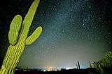 Stary Sky with Saguaro Cactus over Organ Pipe Cactus Nm, Arizona Photographic Print by Richard Wright