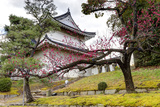 Japan, Kyoto. Scenic of Nijo Castle Fotodruck von Jaynes Gallery