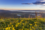 Groundsel, Swan Range Looking Down onto Flathead Lake, Montana Photographic Print by Chuck Haney
