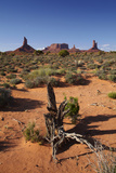 Navajo Nation, Monument Valley, Landscape of Mitten Rock Formations Photographic Print by David Wall