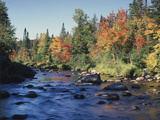 New York, Adirondack Mts, Sugar Maple Trees Along the AUSAble River Photographic Print by Christopher Talbot Frank