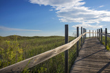 Minnesota, Duluth, Park Point, Boardwalk over Dunes Photographic Print by Peter Hawkins