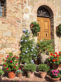 Italy, Tuscany. Flowers by House in the Medieval Town Monticchiello Fotografisk tryk af Julie Eggers