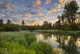 The Whitefish River at Sunrise Reflecting in Whitefish, Montana Photographic Print by Chuck Haney