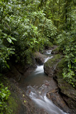 Stream and Waterfalls, Rainmaker Rainforest Reserve, Costa Rica Photographic Print by Thomas Wiewandt