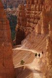 Utah, Bryce Canyon National Park, Hikers on Navajo Loop Trail Through Hoodoos Photographic Print by David Wall