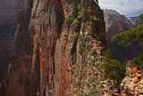 Utah, Zion National Park, Marrow Steep Hiking Track Leading to Angels Landing Photographic Print by David Wall
