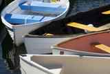 Maine, Rockland. Colorful Row Boats in Rockland Marina Fotografisk tryk af Cindy Miller Hopkins