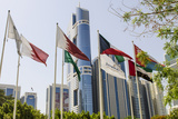 Flags in Park and Downtown Skyline of Dubai, United Arab Emirates Photographic Print by Michael DeFreitas