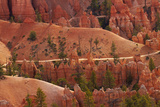 Utah, Bryce Canyon National Park, Hikers on Queens Garden Trail Through Hoodoos Photographic Print by David Wall