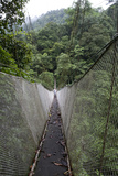 Suspension Bridges in Rainmaker Reserve, Costa Rica Photographic Print by Thomas Wiewandt