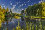 Chuck Haney - Flathead River Catches Morning Light in the Flathead Valley, Montana - Fotografik Baskı