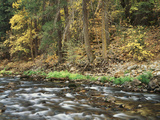 California, Sierra Nevada, Yosemite National Park, Autumn Along the Merced River Photographic Print by Christopher Talbot Frank