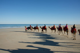 Western Australia, Broome, Cable Beach. Camel Ride on Cable Beach Photographic Print by Cindy Miller Hopkins