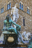 Statues in the Palazzo Vecchio Photographic Print by Terry Eggers