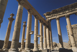 Syria, Palmyra, View of Temple of Bel Photographic Print by Steve Roxbury