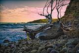 Caribbean, Grenada, Lasagesse Beach Photographic Print by Rona Schwarz